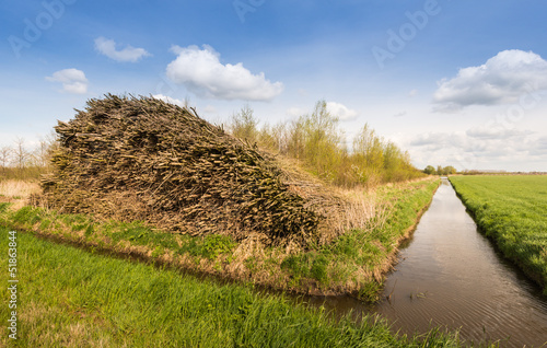 Stacked osiers in a Dutch polder landscape