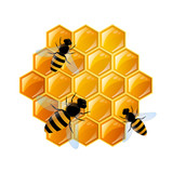 Vector Background with Honeycombs and Bees