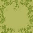 weinblatt, weintraube, weinrebe, abstrak, floral, frühling,