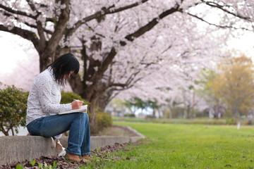 桜の木の下で勉強