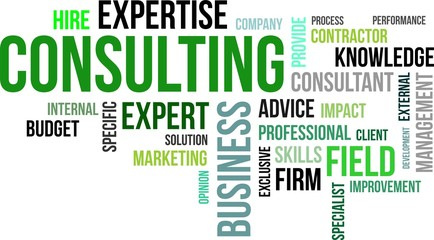 word cloud - consulting