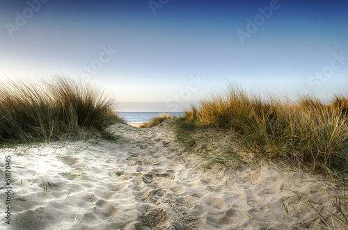 canvas print picture Path through the Dunes
