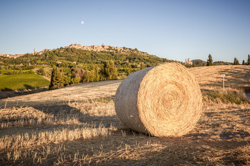 Bale of hay, in the background Montepulciano, Tuscany