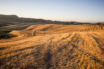 Hay bales and rolling landscape at sunset, Tuscany, Italy