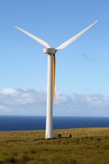 Wind Generator in Motion