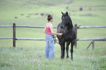 Natural Horsemanship. movement, Motion.