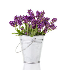lavender in a metal bucket