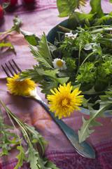 wilder Salat