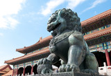 Bronze lion statue in Forbidden City, Beijing in China