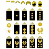Insignia of the Iranian Army poster