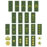 Insignia of the Swedish army poster
