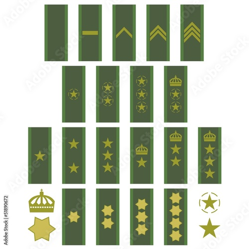 Insignia of the Swedish army