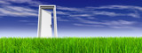 Conceptual white door in grass