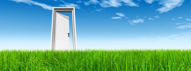 Conceptual white door in grass