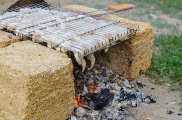 Meat cooking over a barbecue