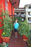 baby on his orchard in fact with pots on a terrace of an apartme