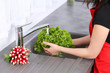 L_Salade Verte