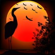 Heron Shape on Stunning Sunset-Airone nel Tramonto