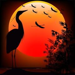 Heron Shape on Stunning Sunset-Airone nel Tramonto