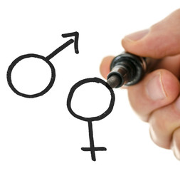 Male hand drawing gender symbols on a virtual whiteboard