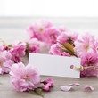 Cherry blossoms and white card