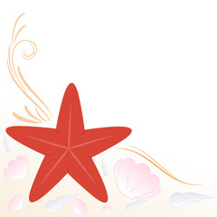 sfondo stella marina e conchiglie