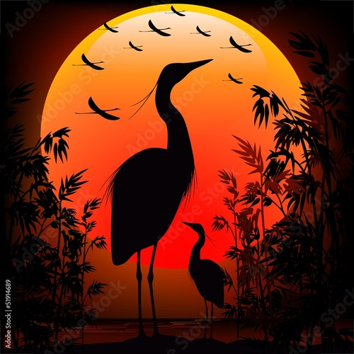 Heron Shape on Stunning Sunset