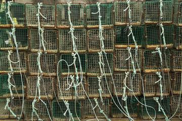 Nasas de pesca 4