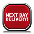NEXT DAY DELIVERY! ICON
