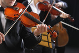 Fototapety Classical music. Violinists in concert