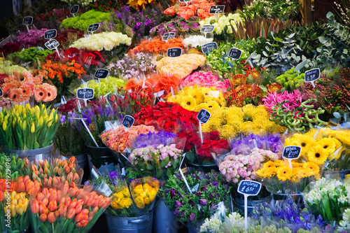 beautiful flowers in shop for sale