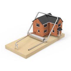 House in mouse trap
