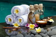 canvas print picture - At the Spa, concept in a luxury Villa on Bali Island