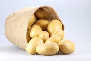 Kartoffeln02