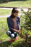 Girl cleans a bush from dry branches