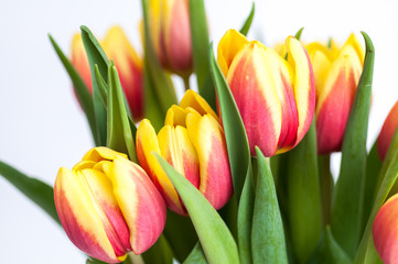 Ein Blumenstrauss mit rot-gelben Tulpen