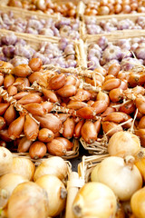 Cipolla al mercato