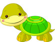 Fun zoo. Turtle