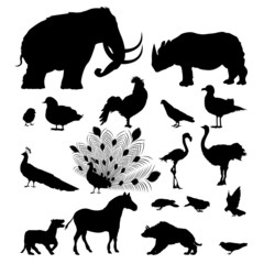 Wild animal silhouettes