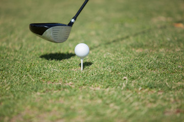 Closeup of a golf club and a golf ball before tee off