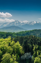 Carpathian Mountains Scenery