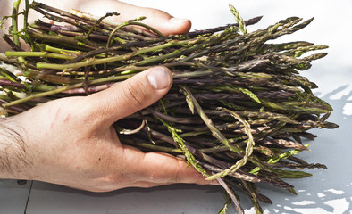 Fresh asparagus in his hands