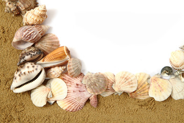 frame from the sand and shells