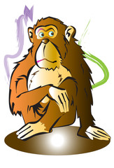 monkey animal cartoon