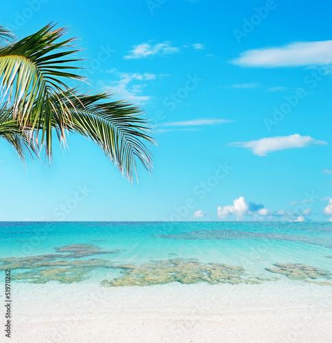 Fototapeten,strand,schön,schönheit,blau