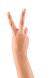 Beautiful female hand with peace or victory sign