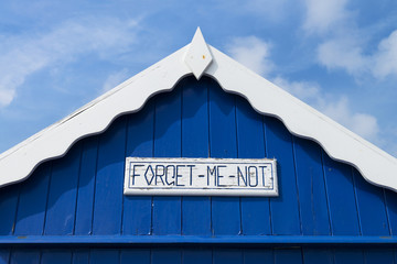 Forget Me Not (Beach Hut Detail)