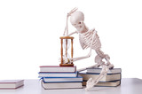 Skeleton reading books on white