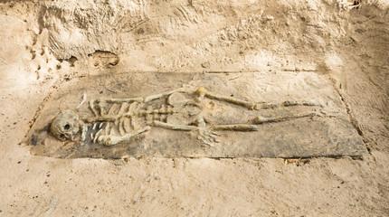Remains of a Skeleton in Krabi, Thailand
