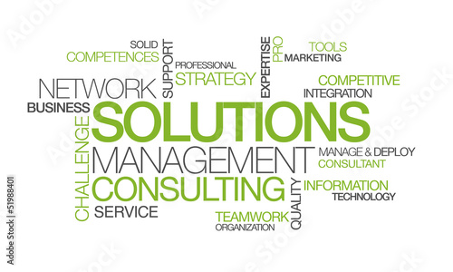 Network Solutions management consulting word tag cloud image